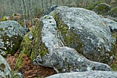 Sculpted rocks called by Tome faces, in Sierra de Francia-Las Batuecas Natural Park. Salamanca province, Castilla y León. Spain.