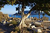 Greece, Dodecanese, Kos island, Kefalos bay, Agios Stefanos church ruins.