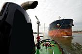 tugboat at the harbor of Rotterdam.