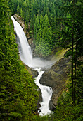 Washington, Cascade Mountains, Wallace Falls State Park, Wallace Falls Surrounded By Lush Forest.