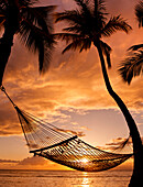 Hawaii, Maui, Silhouette Of A Hammock Hanging Between Two Palm Trees Near Ocean At Sunset