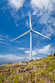 Hawaii, Maui, Ma'alaea, Windmill Against Blue Sky At Kaheawa Wind Power Farm