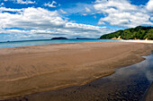 New Zealand, North Island, Coromandel, Sailor's Grave Beach, Fisheye Lens.