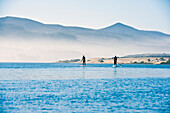 California, Morro Bay State Park, Two People Stand Up Paddleboard In Ocean.
