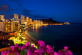 Hawaii, Oahu, Nighttime View Of Waikik With Flowers In Foreground.