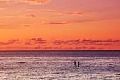 Hawaii, Oahu, North Shore, Stand Up Paddling At Sunset.