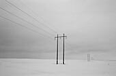 Powerlines Near Goderich, Ontario, B/W