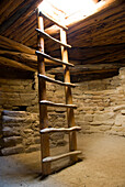Ladder And Ruins, Mesa Verde National Park, Cortez, Colorado