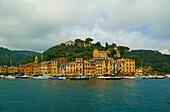 Row Of Buildings In Main Harbour, Portofino, Italy