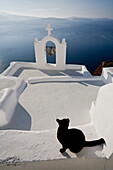 View Of A Cat On A Wall In The Village Of Oia Perched On Steep Cliffs Overlooking The Submerged Caldera, Santorini, Greece