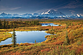 Scenic View Of Tundra Ponds And Fall Colors With Mt. Mckinley In The Background, Denali National Park, Alaska