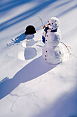 Snowman In Forest Making Snow Angel Imprint In Snow In Late Afternoon Sunlight Alaska Winter