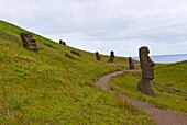 'Tiki sentinels guard the volcanic pathway in Rano Raraku National Park; Easter Island, Chile'