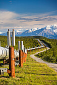 Trans Alaska oil pipeline traverses the tundra near the pass of the Alaska Range, south of Delta Junction, Interior Alaska.