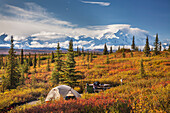 Tent campsite at Wonder Lake Campground in front of Mt McKinley (Denali), North America's tallest peak (20,320 ft), Denali National Park, interior, Alaska.