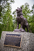 Memorial statue of Balto the sled dog at the Iditarod Trail Race Headquarters in Wasilla, Alaska. Balto was the hero sled dog of the 1925 serum relay from Nenana to Nome.
