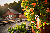 The Saltry Restaurant in Halibut Cove, Kachemak Bay, Southcentral Alaska.