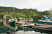 Kachemak Bay Ferry vessel, the Danny J transports visitors from Homer, Alaska to The Saltry Restaurant in Halibut Cove, Kachemak Bay, Southcentral Alaska.