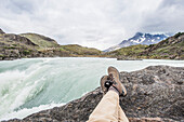 'Sitting on a rock with a view of a rushing mountain river; Tores Del Paine, Magallanes, Chile'