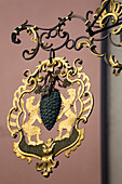 'Close up of gold sign with grapes and lions; Rattenberg, Austria'