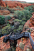 'Tourists on the steps in Kings Canyon; Northern Territory, Australia'