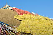 'Abundance of prayer flags on a mountain slope at a Tibetan monastery near Hot Spring city; Madoi County, Tibet'