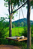'A wooden swing hanging from a tree with a lush green field in the background; Ulpotha, Embogama, Sri Lanka'