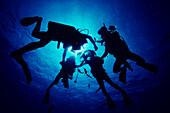 Hawaii, Divers silhouetted by sunburst