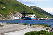 Maersk container vessel, Sea Land Charger, in Unalaska Bay, Unalaska, Alaska