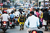 'Busy street with motorcycles, pedestrians and animals; Mysore, India'