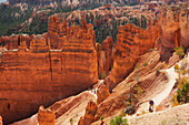'Rugged landscape of Bryce Canyon National Park; Utah, United States of America'