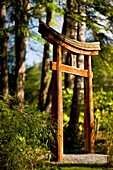 'Arch on pathway in the Japanese Gardens; Mayne Island, British Columbia, Canada'