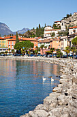 'Buildings and cars along the waterfront on Lake Garda; Malcesine, Verona, Italy'