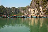 'Floating houses in Vung Vieng Fishing Village in Bai Tu Long Bay, Halong Bay; Vietnam'