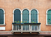'Blossoming flowers decorate the railing of a balcony; Venice, Italy'