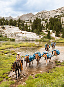 Horse Packers lead a pack train across a stream
