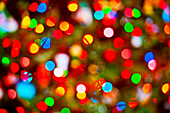 Abstract view of blurred Christmas lights.