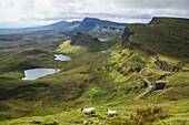 'Mountain range the Quiraing; Isle of Skye, Hebrides, Scotland'