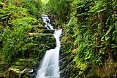 'O'Sullivans Cascade, near Killarney; County Kerry, Ireland'
