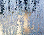 'Frost patterns are captured on a frosted window pane in the early morning on Vancouver Island; British Columbia, Canada'