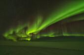 'Northern Lights (Aurora Borealis); Old Crow, Yukon, Canada'
