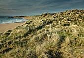 'Fanore Beach on the Wild Atlantic Way coastal route; County Clare, Ireland'
