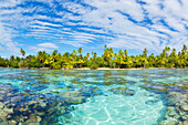 'Tropical reef in the coral gardens, Tahaa, French Polynesia'