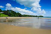 People walking on a long sandy beach near Paihia, Bay of Islands, North Island, New Zealand, Pacific