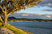 Late  afternoon light at sunset over the shores of Lake Taupo, North Island, New Zealand, Pacific