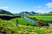 Pretty scenery around the Lewis River, South Island, New Zealand, Pacific