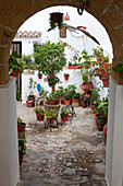 Patio in the historical town of Vejer de la Frontera, Cadiz Province, Andalusia, Spain, Europe