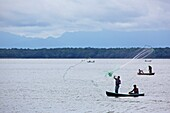 Fishermen on the Rio Dulce casting a net, Guatemala, South America