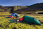 Adventure, camping in the mountains, Moos, Laugarvegur, Fjallabak, South Island, Island