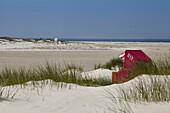 Beach chair in a sandbank, North sea Coast, Amrum, Schleswig Holstein, Germany